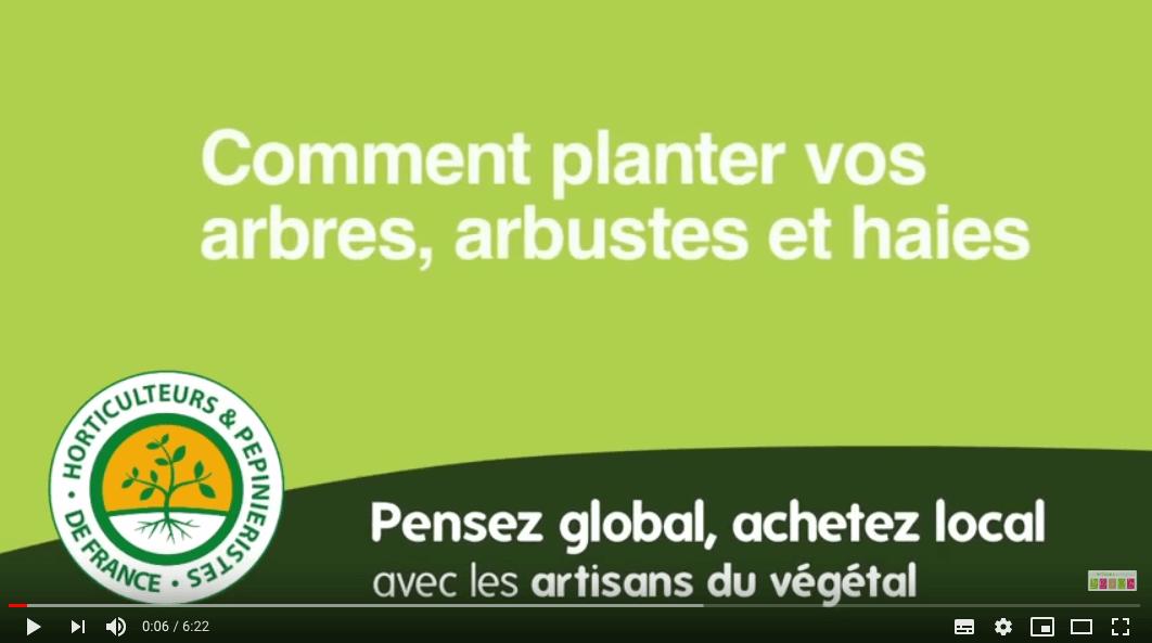 Vidéo : comment planter vos arbres, arbustes et haies ?