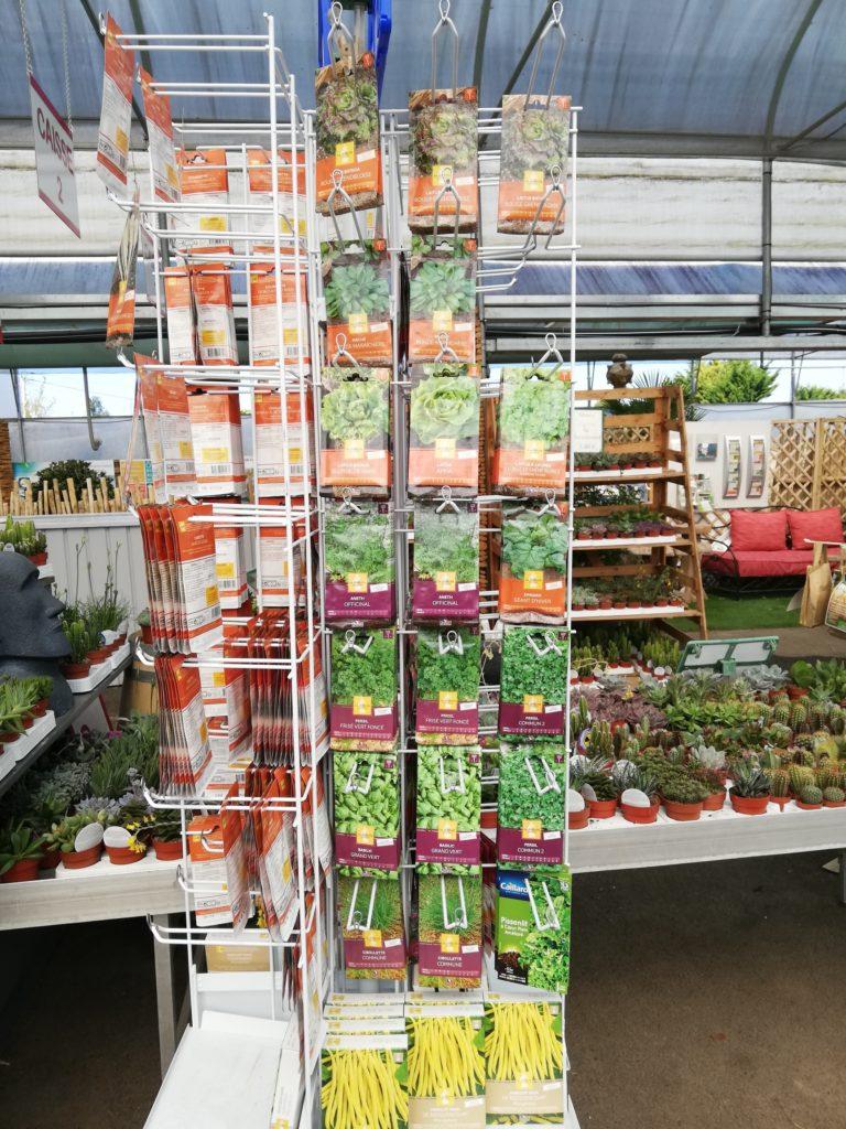 Photos des plants des semences