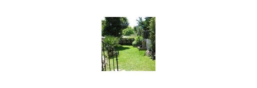 Aménager un petit jardin avec des plantes parfumées